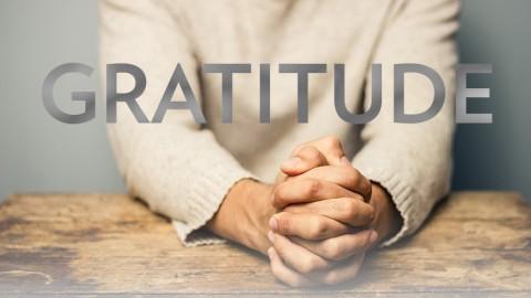The Schools of Gratitude